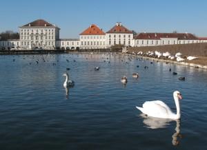 Swans_Nymphenberg