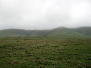 Rolling Hills in Fog