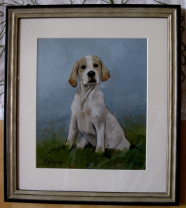 Pointer Puppy Portrait!