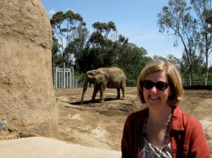 Enjoying Elephants