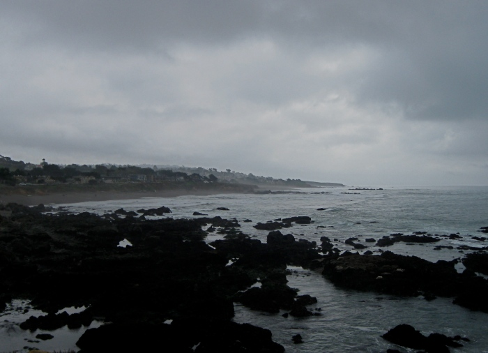 Cambria coast on blustery day