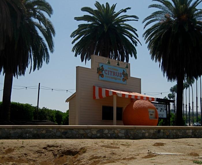 Orange Stand