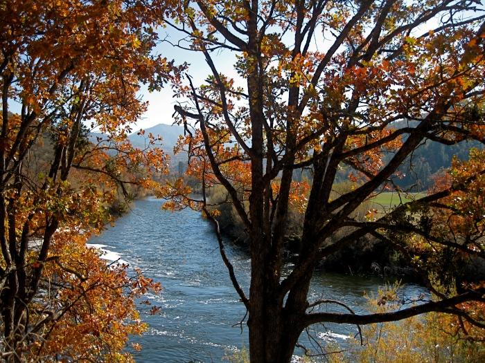 Klamath Autumn